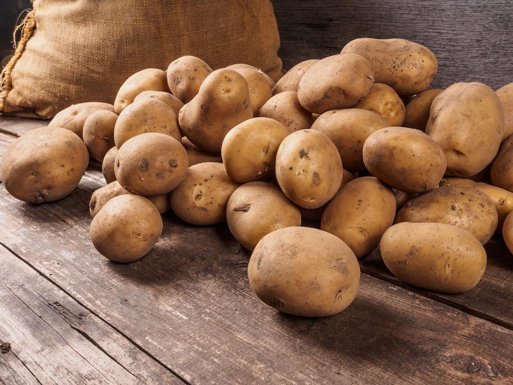 L industrie de la pomme de terre est en pleine croissance - Date recolte pomme de terre ...
